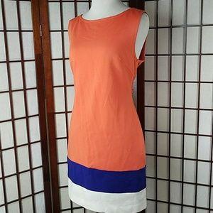 Sleeveless Lined Mini Sheath Dress